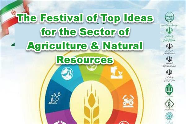Creative ideas will help the agricultural industry