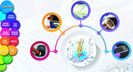 Knowledge-based companies in the field of construction of fast diagnostic biological nano-sensors will be recognized
